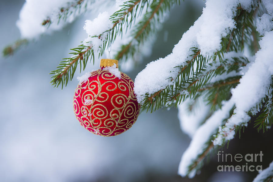 Christmas Photograph - Christmas Ornament by Diane Diederich