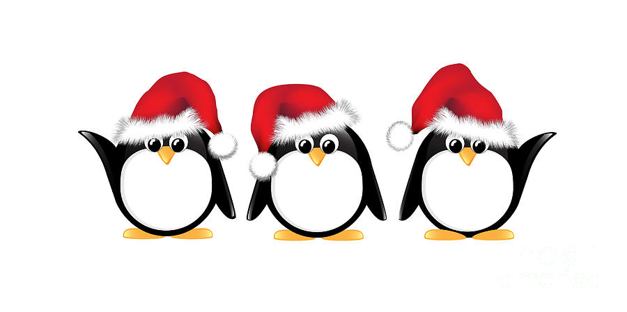 christmas penguins isolated photograph by jane rix