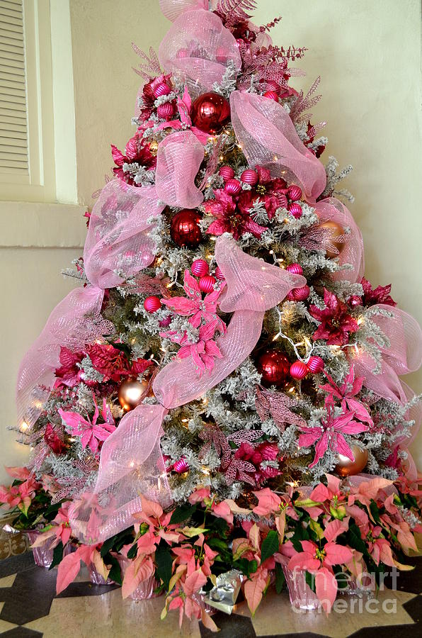 Christmas Photograph - Christmas Pink by Mary Deal