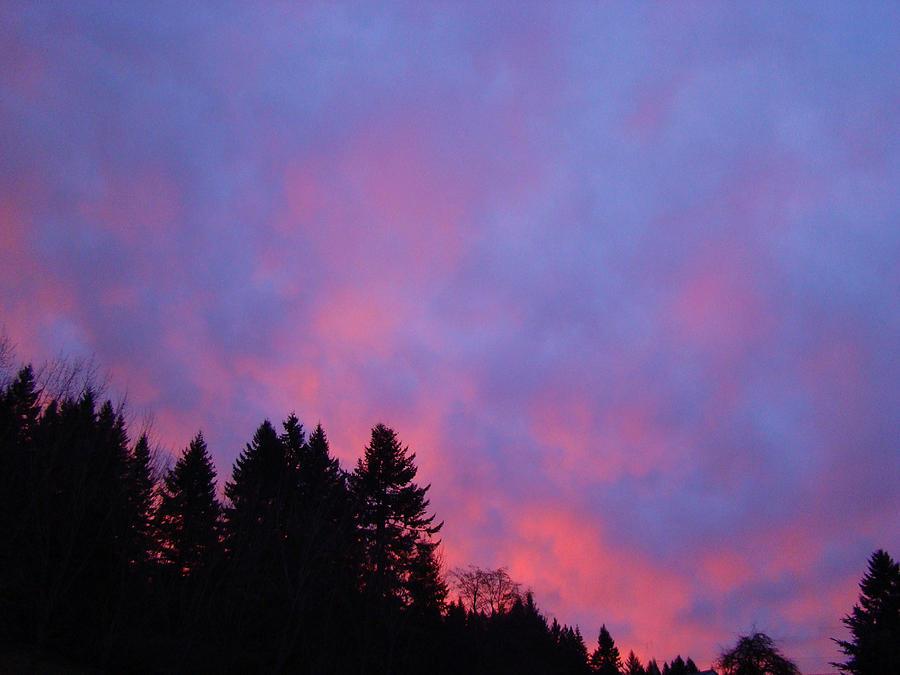 Pink Sunrise Photograph - Christmas Sunrise by Lisa Rose Musselwhite