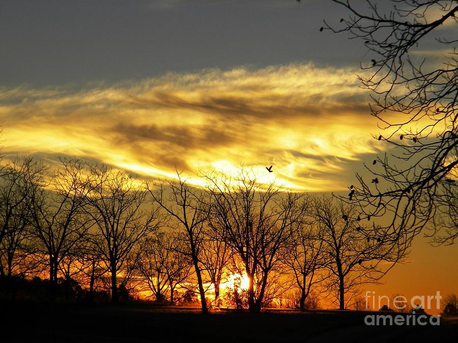 Sunrise Photograph - Christmas Sunrise by Matthew Seufer