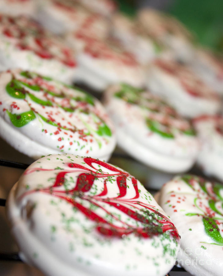 Christmas Photograph - Christmas Sweets by Christine Wiegand