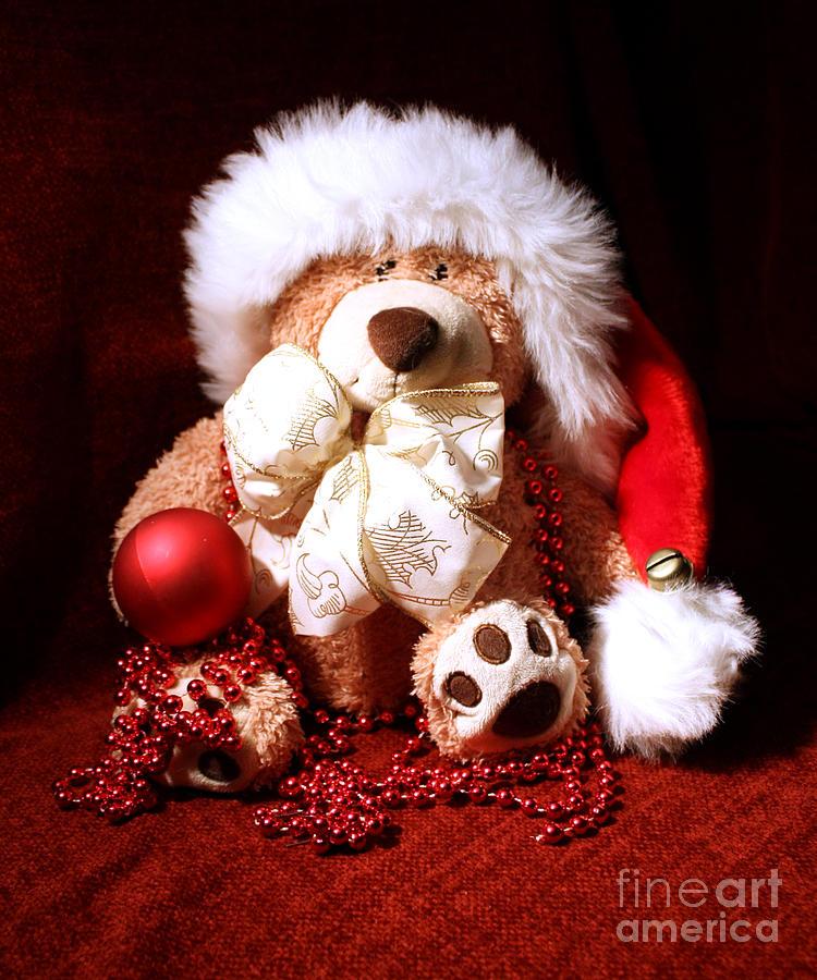 Teddy Photograph - Christmas Teddy by Terri Waters