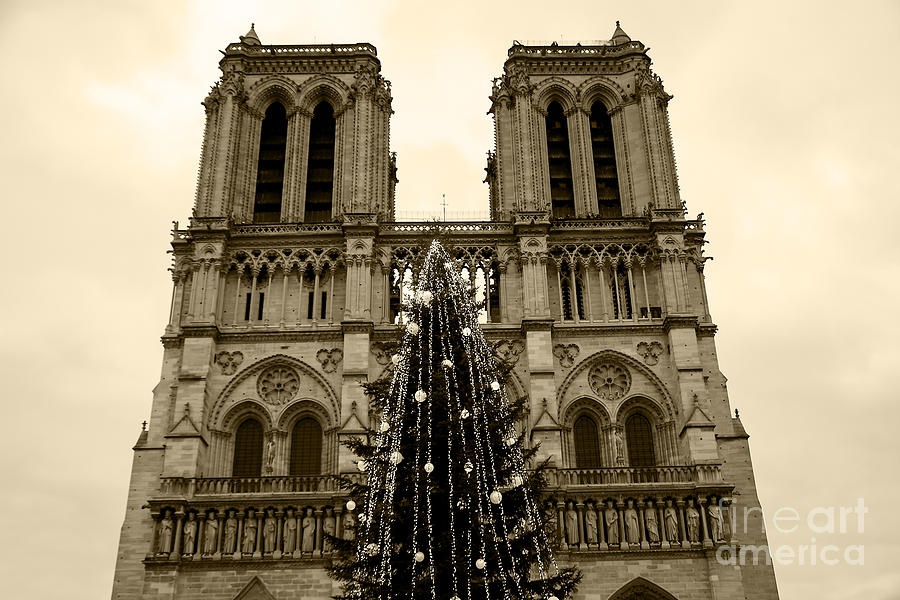 Christmas Tree In Front Of The Notre Dame Cathedral In Paris Sepia By Elena Dijour