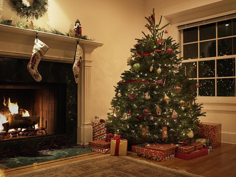 Christmas Tree Living.Christmas Tree In Living Room