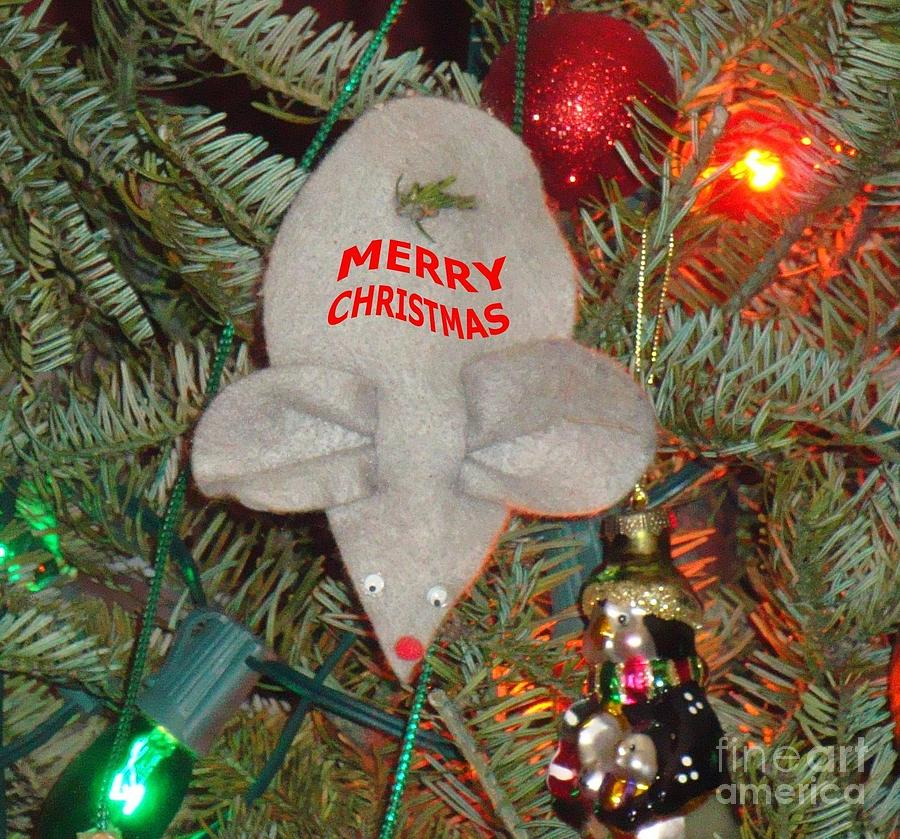 Holiday Photograph - Christmas Tree Mouse by Joseph Baril