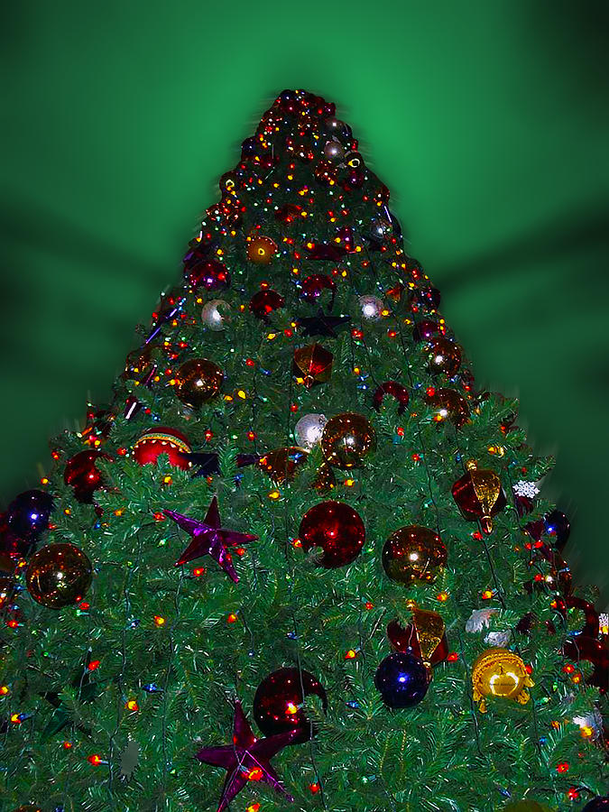 Xmas Tree Photograph - Christmas Tree by Thomas Woolworth