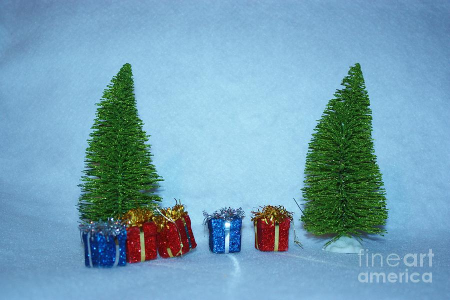 Red Photograph - Christmas Trees With Red And Blue Presents by Robert D  Brozek