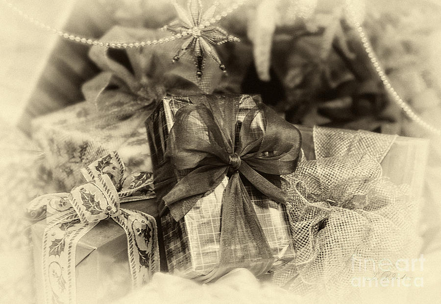 Photographer Photograph - Christmasgift Under The Tree In Sepia by Iris Richardson