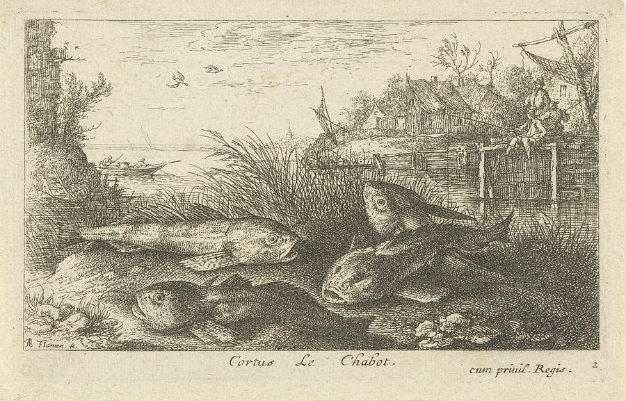 Fishes Drawing - Chub, Squalius Cephalus On A Riverbank, Print Maker Albert by Albert Flamen And Jacques Van Merlen