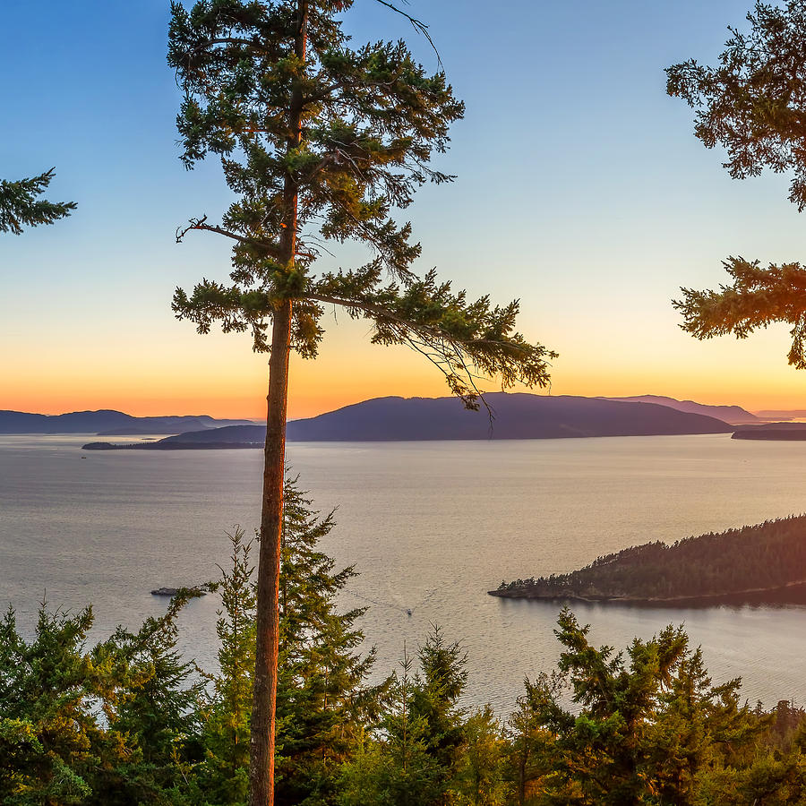 Chuckanut Photograph - Chuckanut Bay Triptych B by Jacob Knapp
