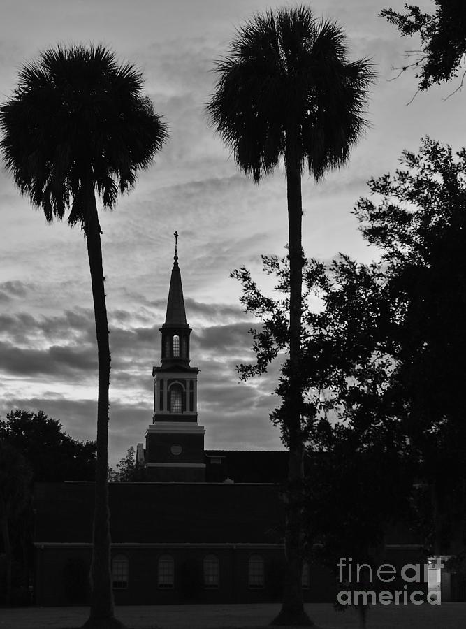 Church and Cat Await Autum's Even by Wayne Nielsen