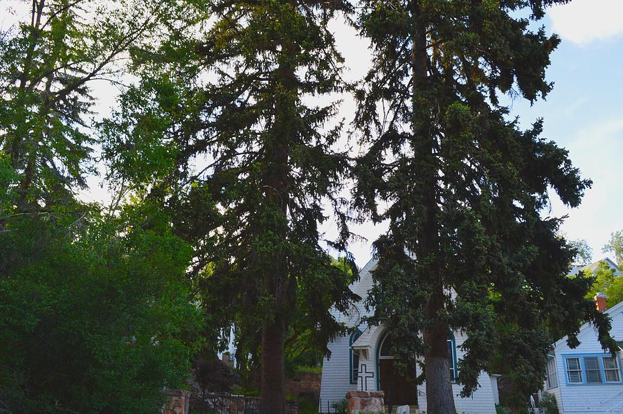 Trees Photograph - Church And Trees. by Maegan Dann