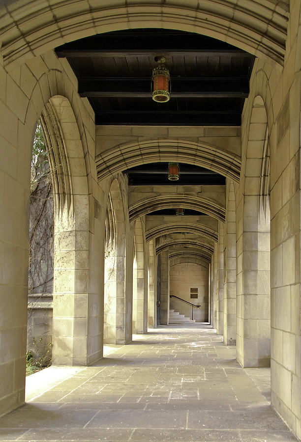 Church Arches by Pristine Images