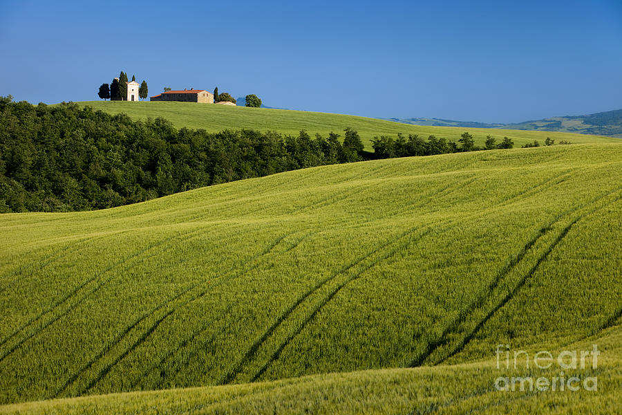 Cappella Photograph - Church In The Field by Brian Jannsen