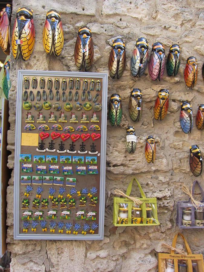 Cicada Photograph - Cicada Souvenirs by Pema Hou