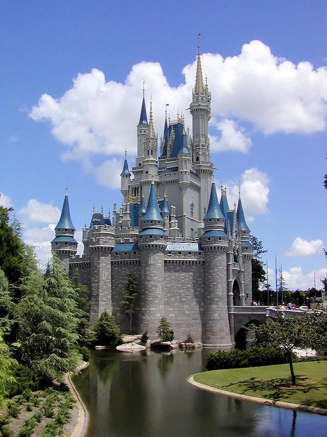 Cinderella Castle Photograph by Gary Burke