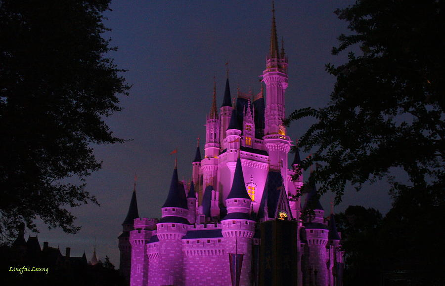 Cinderella Castle Illuminated In Pink Glow Photograph By