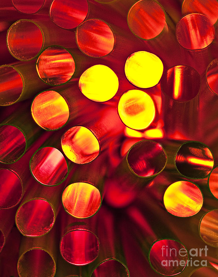 Straw Photograph - Circles Of Light by Linda D Lester