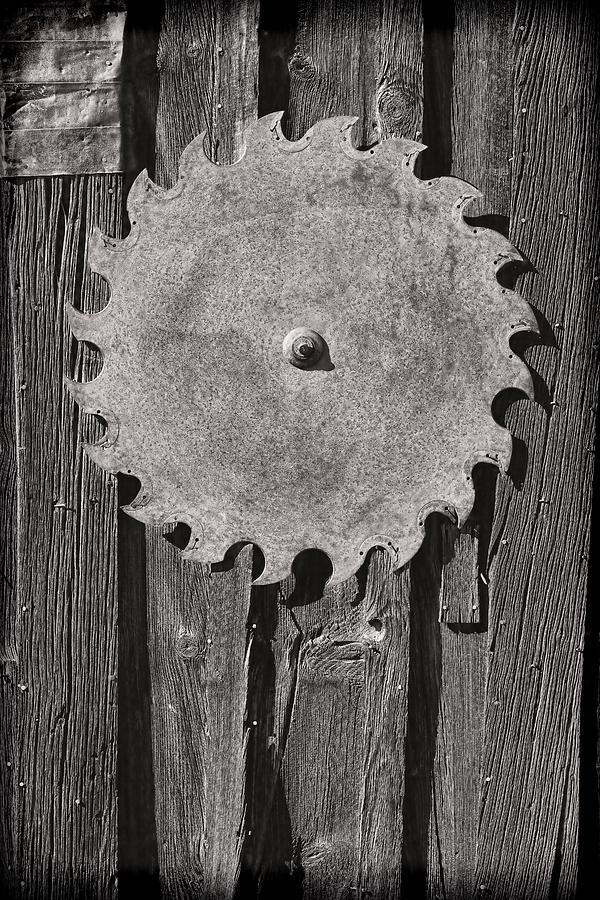 Circular Photograph - Circular by Kelley King