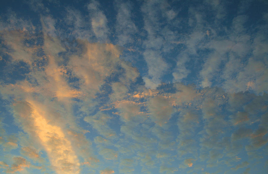 Cirrocumulus Photograph - Cirrocumulus Morning by Ellen Henneke