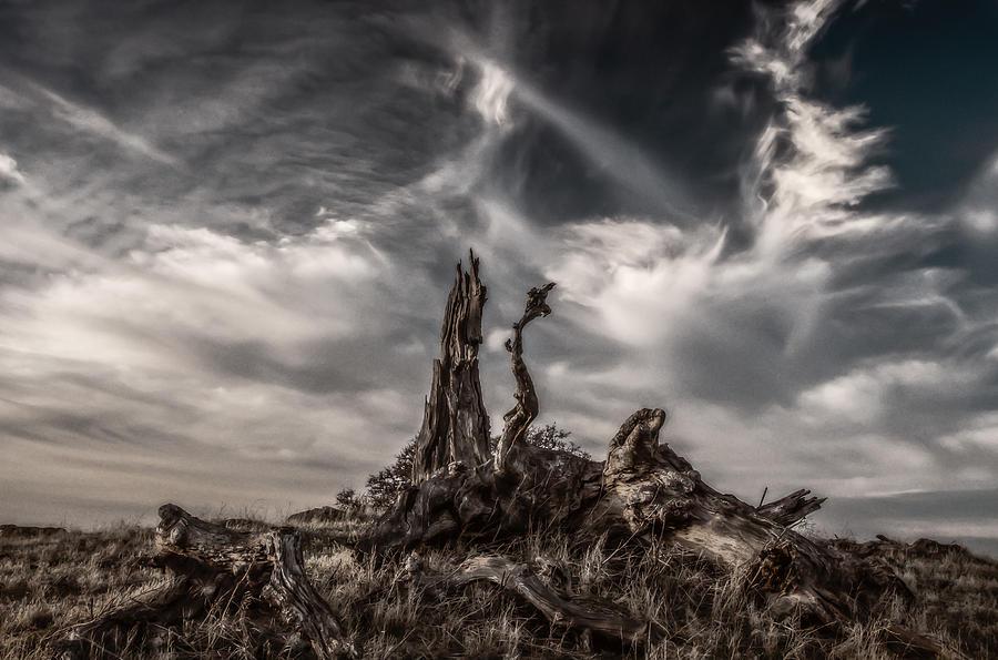 Landscape Photograph - Cirrus Clouds At Sunset  by Marc Crumpler