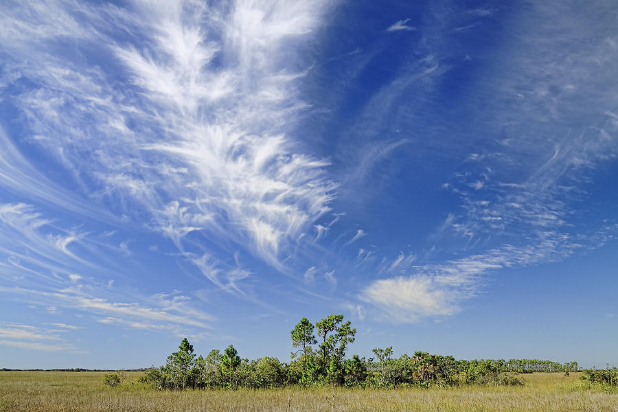 Cloud Photograph - Cirrus Clouds  by Rudy Umans