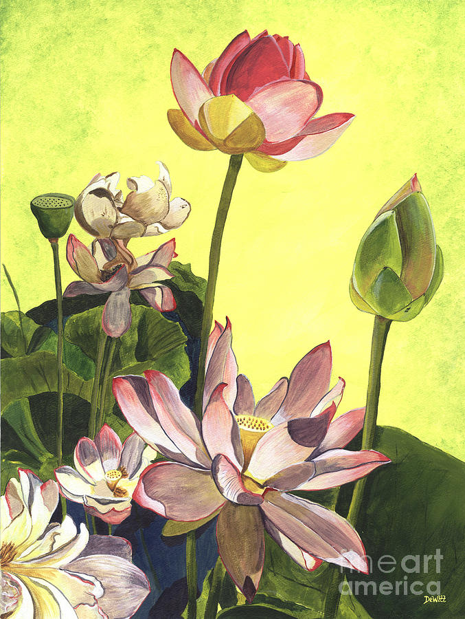 Floral Painting - Citron Lotus 1 by Debbie DeWitt
