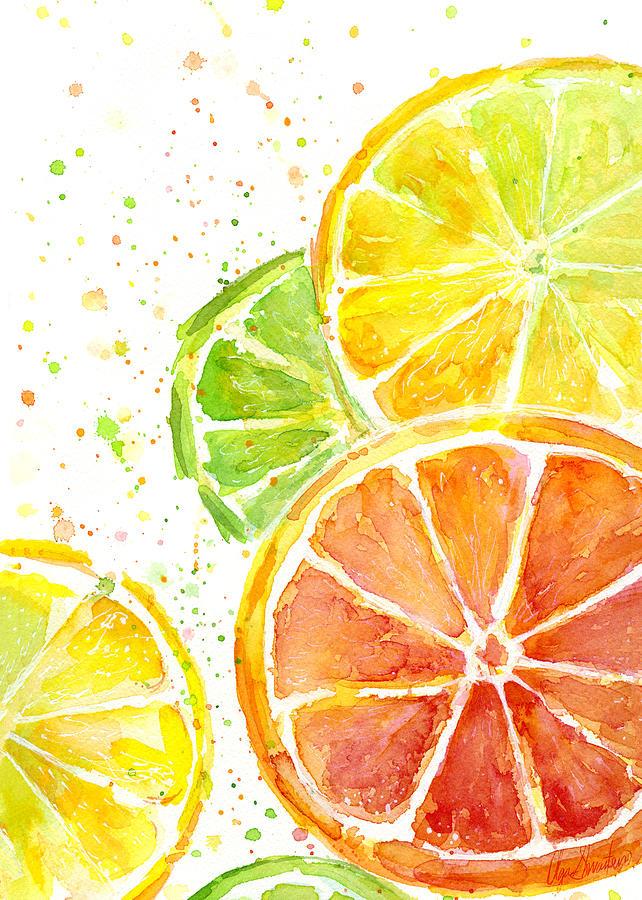 Citrus Fruit Watercolor Painting By Olga Shvartsur