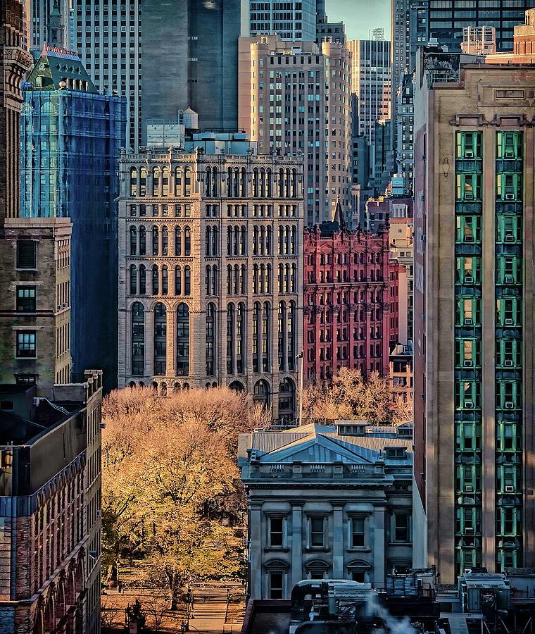 City Photograph - City Life by Liyun Yu