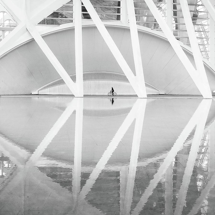 Architecture Photograph - Ciudad Artes Y Las Ciencias by Francisco Sanchez Fotografias
