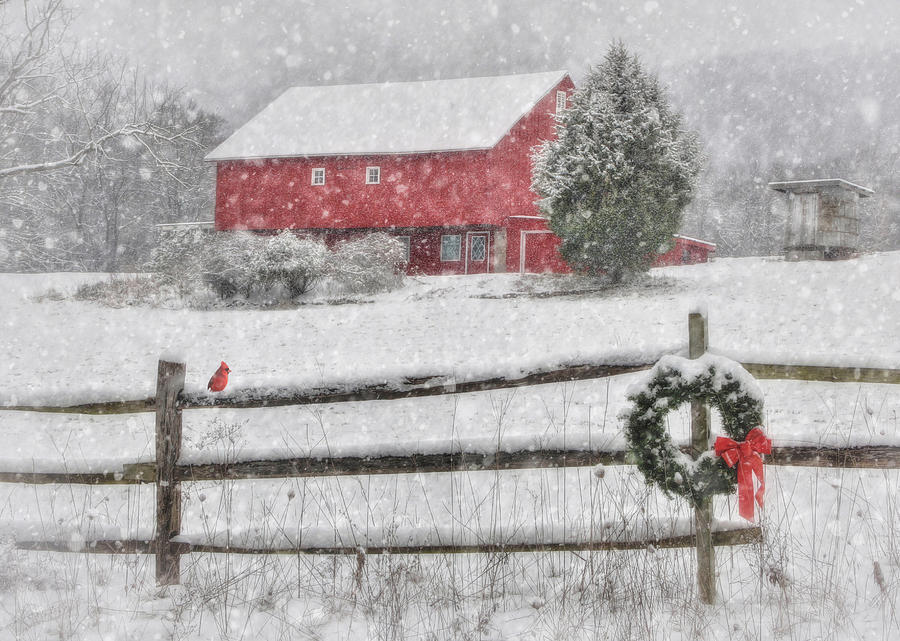 Red Barn Photograph - Clarks Valley Christmas 2 by Lori Deiter