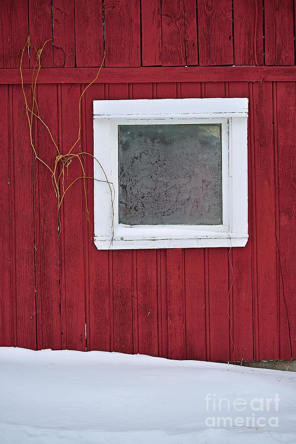 Red Barn Photograph - Classic Canada by Joshua McCullough