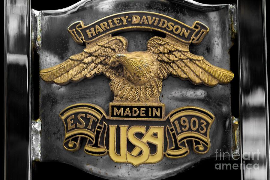 Harley Davidson Eagle Photograph - Classic Eagle by Patty Descalzi