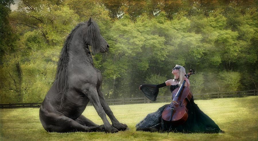 Friesian Horses Photograph - Classical Baroque by Fran J Scott