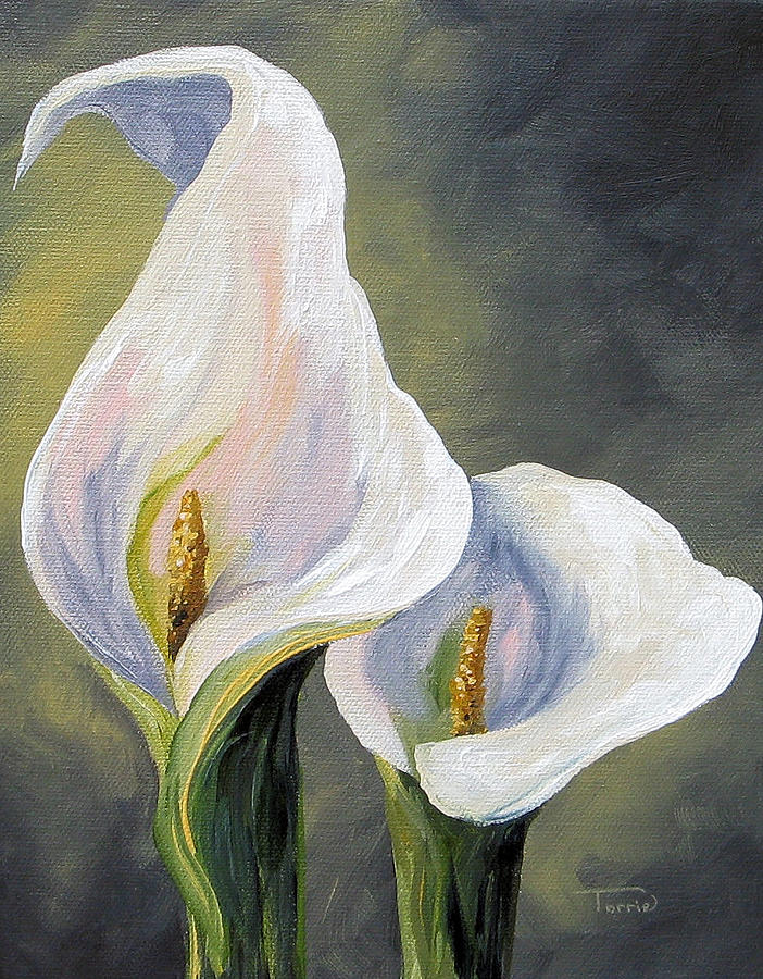 Claudia's Calla Lilies Painting by Torrie Smiley