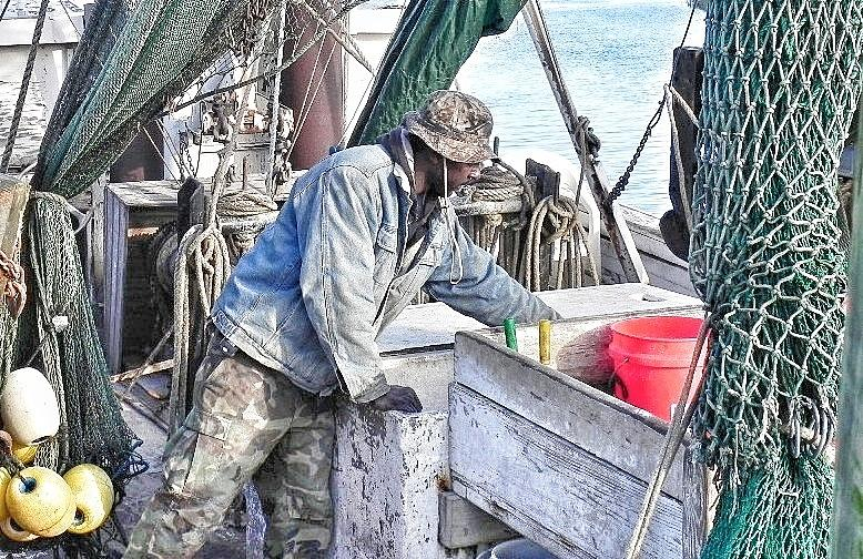 Shrimp Boats Photograph - Cleaning Up After The Haul by Patricia Greer