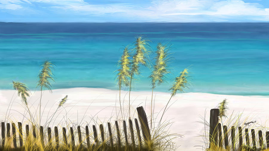 Beach Digital Art - Clear Water Florida by Anthony Fishburne
