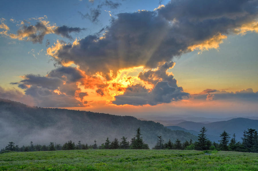 Roan Mountains Photograph - Clearly Divine by Mary Anne Baker