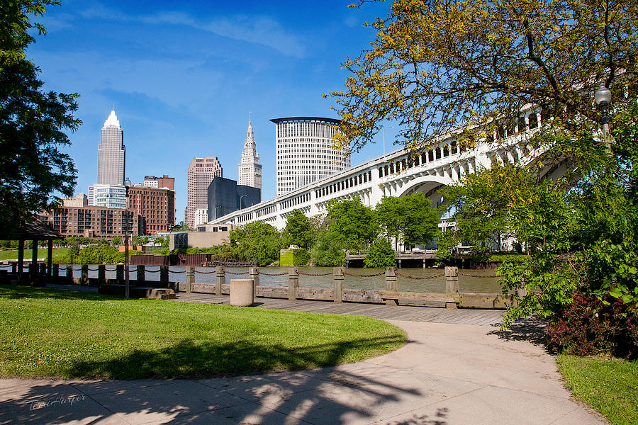 Cleveland Photograph - Cleveland Skyline From Riverbed Road by Terri Harper