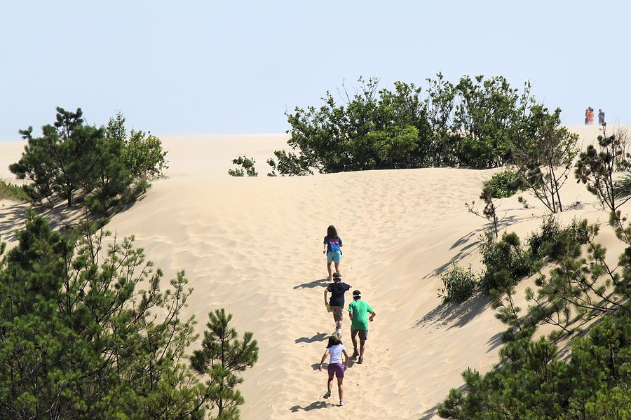 Sand Photograph - Climbing The Dunes by Carolyn Ricks
