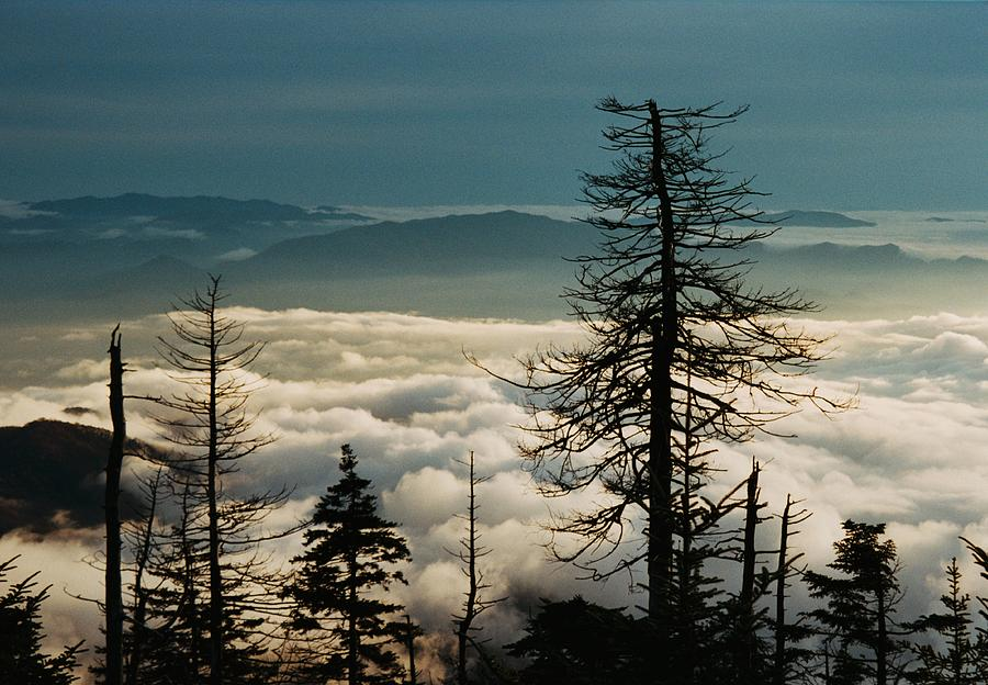 Clingmans Dome Sea Of Clouds - Smoky Mountains Photograph