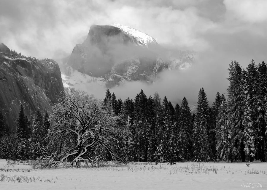 And Photograph - Cloaked In A Snow Storm - Monochrome by Heidi Smith