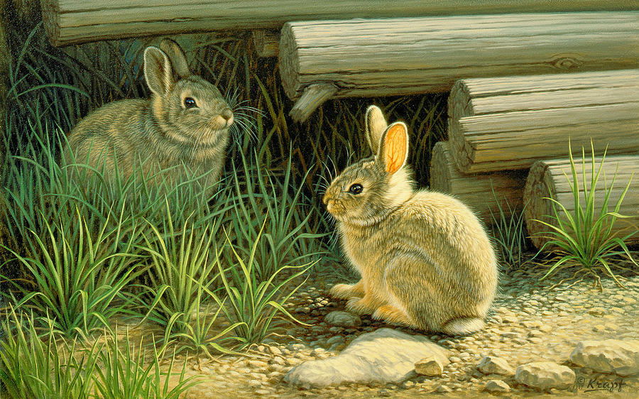 Wildlife Painting - Close To Cover by Paul Krapf