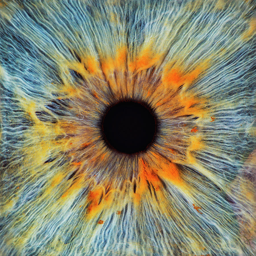 Close-up Of A Human Eye, Pupil And Iris Photograph by Dimitri Otis