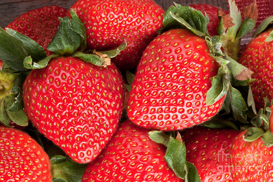 Strawberries Photograph - Close Up Of Delicious Strawberries by Sharon Dominick