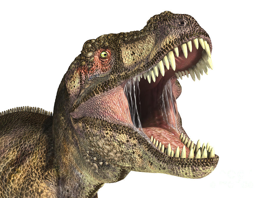 Close-up Of Tyrannosaurus Rex Dinosaur Digital Art