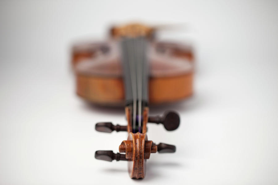Close Up Of Violin Photograph by Foto Bureau Nz Limited