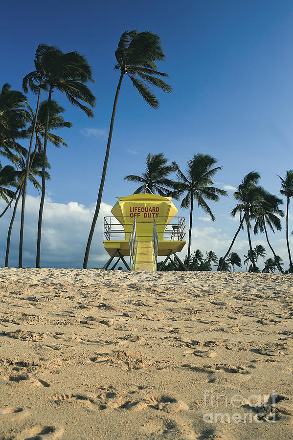 Off Photograph - Closed Lifeguard Shack On A Deserted Tropical Beach With Palm Tr by Edward Fielding
