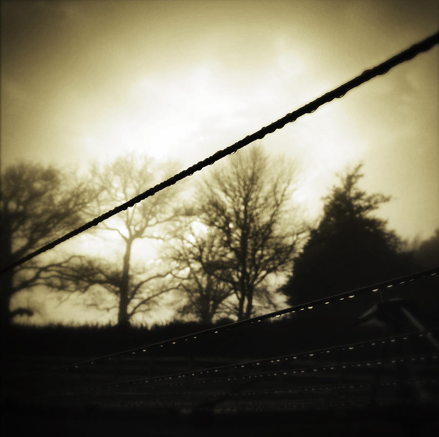 Empty Photograph - Clotheslines  by Les Cunliffe